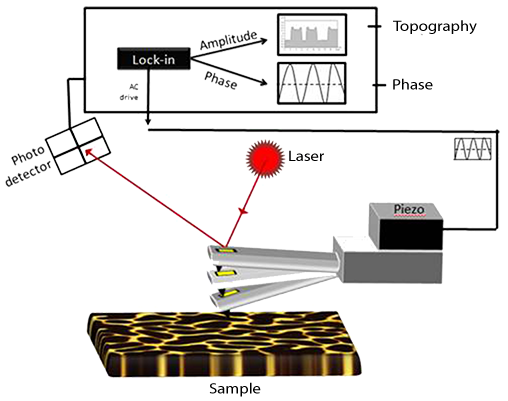 Schematic of the dynamic AFM mode operation