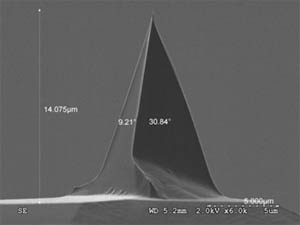 Image of an Atomic Force Microscope tip from Nanoscience Instruments