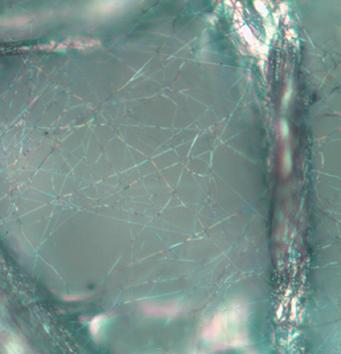 Optical image of Air filter