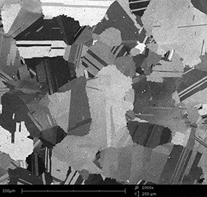 Nickel Based alloy at 1000x using Backscattered electron SEM