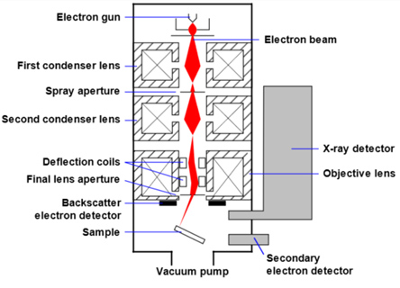Mechanism of Scanning Electron Microscope