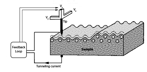 Schematic of Scanning tunneling microscopy