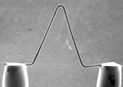 Scanning electron microscope image of a Tungsten filament