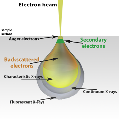 Electron beam interaction schematic