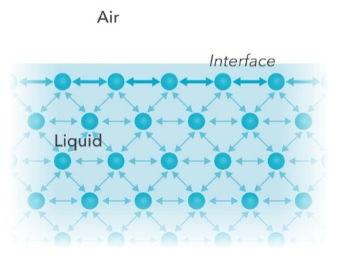 Intermolecular forces between molecules in bulk and interface.