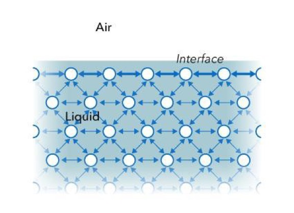 Diagram of the forces acting on liquid molecules.