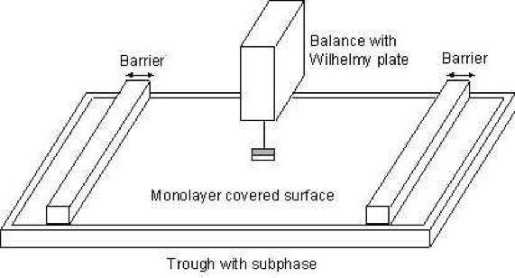 Sketch of langmuir film balance with Wilhelmy plate electrobalance.