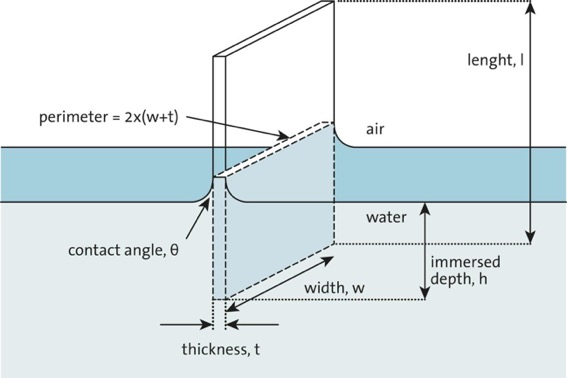 Sketch of Wilhelmy plate partially immersed in water surface.