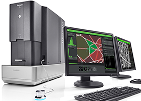 Phenom XL Desktop SEM with Fibermetric Software