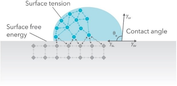 Schematic of a sessile drop and the balance of surface tensions at the three-phase contact line