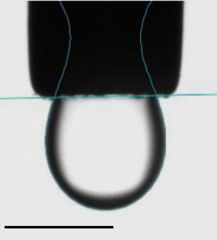 Optical image of pendant drop of a sample