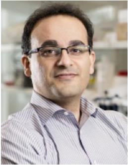 Alireza Abbaspourrad, Ph.D.