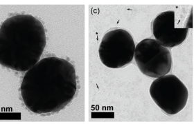 TEM images of Gold Silicon Dioxide with nickel nanoparticles from three sources