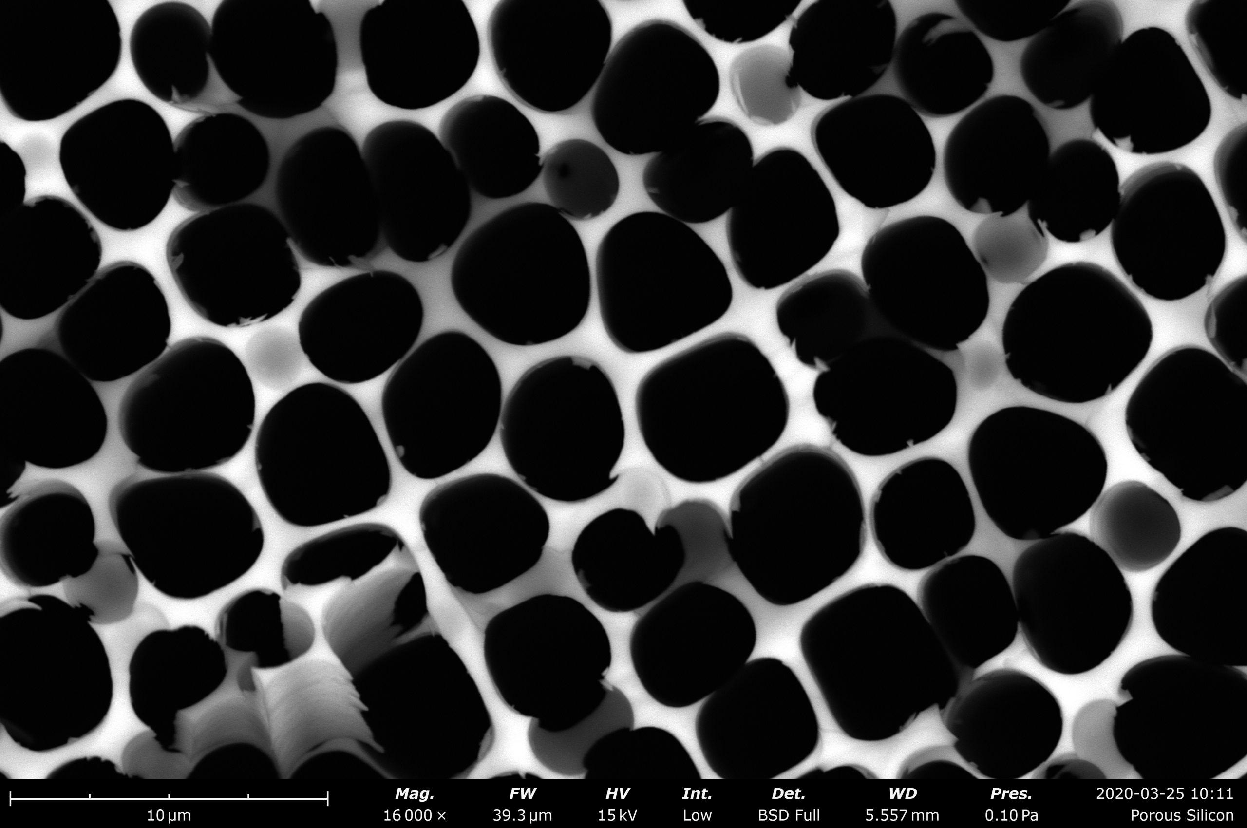 Porous silicon imaged on the Phenom Desktop SEM