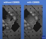 On Demand CryoET Mini Symposium: Sample Preparation – The major limitation for CryoET and SPA